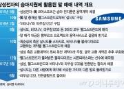삼성은 정유라에 왜 말을? 사건의 재구성-③