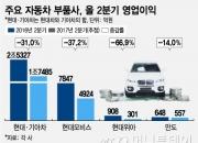 """중국 '사드 보복', 정의선 """"車 협력사 더 어렵다"""""""