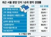 """""""그래도 서울불패""""…7000명 몰린 마포 아파트 청약"""