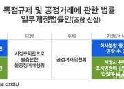 """[the L 리포트] 공정위가 """"기업 쪼개라"""" 명령?…""""위헌 소지"""""""