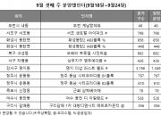 규제 강화 여파 '분양 시장 주춤' 견본주택 개관 3곳만