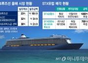 135조 크루즈선 시장 잠식하는 중국...구경만 하는 한국