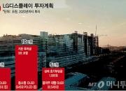 LGD 中공장 무산 땐 국내투자도 연쇄 차질