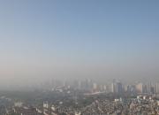 서울 초미세먼지 농도, 뉴욕·도쿄보다 2배 높아…'도심숲 확대 필요'