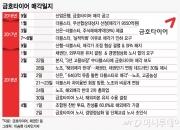 세계 10위 '금호+더블스타' 온다…'먹튀' 우려 숙제