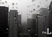 """""""집에 비가 새요""""…집주인 vs 세입자, 누구 책임일까"""