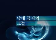[카드뉴스] '낙태 금지'의 그늘