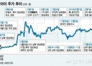 남북 정상회담 이후 '1株 2000원→1만원', 회사 실적은?