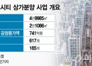 [단독]송파 헬리오시티 조합의 '수상한' 상가분양