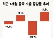 """중국 3월 수출 반등은 '기저효과' 때문, """"바닥 친 건 아냐"""""""