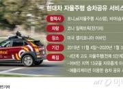 현대차, 한국 아닌 미국서 '기사없는 택시' 시험하는 이유