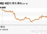 재무 개선 '청신호' 켜진 CJ제일제당, 투자심리도 '굿'
