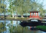 """""""곤니찌와""""…일본 아닌 美하와이 인사법?"""