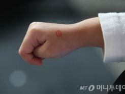 '고사리손 투표인증'