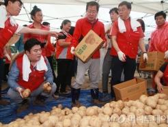 '자유한국당 감자밭 전당대회'