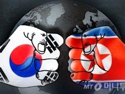 """[MT리포트]남북은 한민족? 부모와 다른 2030 """"통일보다 평화"""""""