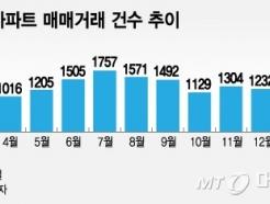 """[MT리포트]""""서울 대신 용인""""…수도권行 짐싼 갭투자"""