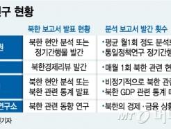 [MT리포트]남북 해빙모드에 北연구 '훈풍'