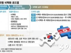 남북 정상, '2020년까지 비핵화' 로드맵 첫걸음 뗄까