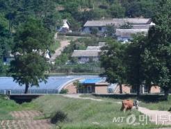 [MT리포트]북한 주택시장 키워드 '시세권', '학세권'…월세도 등장