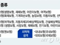 [MT리포트]북한도 자동차보험은 의무…보험사는 국영 1곳
