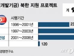 [MT리포트]자원 개발 펀드·P2P 소액대출, 북한 진출 '시도'