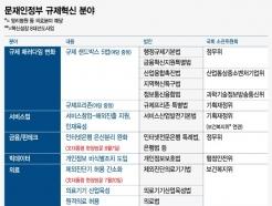 [MT리포트]文정부 규제혁신 상징 된 붉은깃발 리스트