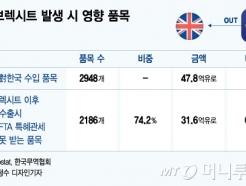 한국산 車에 관세 10% 부활.. '노딜 브렉시트'에 산업계 타격 우려