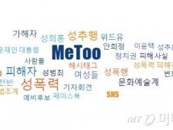 [MT리포트]빅데이터로 본 '미투 1년'…김생민이 최다 검색?