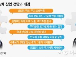 [MT리포트]20% 껑충 뛴 삼성전자·하이닉스, 지금 사도 될까