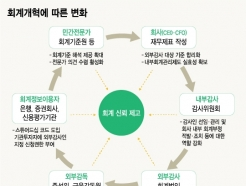 [MT리포트]시장개혁 촉발 신외감법…진통 불구 '가야할 길'