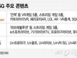 "[MT리포트]""VR이 5G 킬러콘텐츠?""···깊어가는 이통사 고민"
