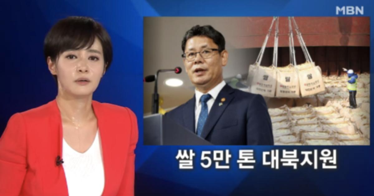 김주하 앵커, 갑작스런 복통으로 생방송 뉴스 도중 교체 - 머니투데이 뉴스
