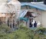 아프리카돼지열병 발생 농장 출입금지