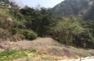 700만원짜리 땅 3.7억 낙찰…'시골땅'에 무슨일?