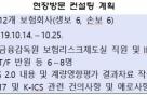 금감원, K-ICS 관련 보험사별 맞춤형 방문 컨설팅 실시