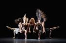 머리카락 군무가 선보이는 '춤의 또다른 지평'