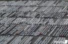 """""""車가 안오네요""""…카캐리어에 막힌 현대차"""