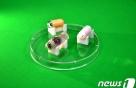 삼키기만 하면, 장기 조직 검사…'캡슐내시경' 개발