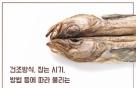 [바다정보다잇다] 황태·동태·코다리…명태의 진짜 이름은?