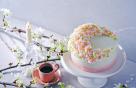 """""""보지 못하면 먹으세요""""…그랜드 인터컨, 벚꽃 케이크 판매"""