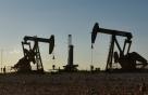 '석유증산 D-1' 美, 러시아에도 사우디에도 연락했다