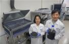 '꿈의 신소재' 그래핀 10년 만에 대량 생산 길 열다