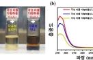 리튬이온 울고 갈 고효율 리튬-황 전지 개발