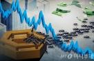 '美폭락'에 개미들 오히려 1.3조 줍줍…뉴딜株는 올랐다
