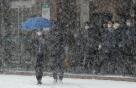 [오늘 날씨]최강 추위 '한베리아'…밤 사이 많은 눈