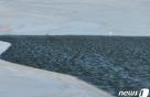 [오늘의 날씨]대구·경북(17일,일)…전날보다 3~5도 더 떨어지고 강풍