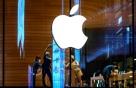 애플카, 자동차회사와 협력 접고 '위탁생산'으로?