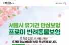 DB손보-서울시, 유기견 입양 시 1년간 보험 지원