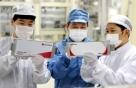 LG엔솔, '원료 부국' 인도네시아 배터리 공장 투자 가시화하나
